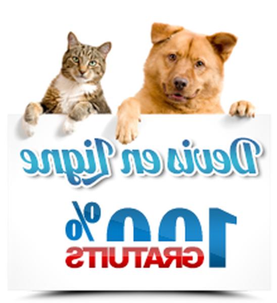 Devis mutuelle pour chien : Devis gratuits