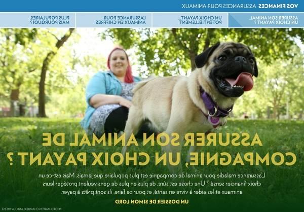 assurance chien osteopathie