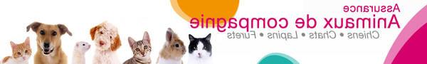Assurance santé animal : Trouver la bonne mutuelle