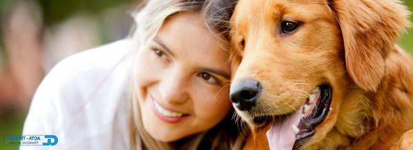 Assurance pour chien de plus de 7 ans : Devis personnalisé